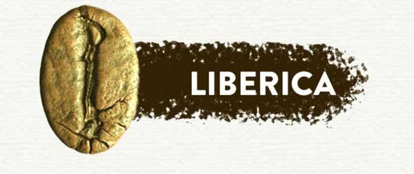 liberica-coffee